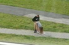 """เสรีเกิ้น!! คู่รักวัยรุ่นเบลารุสมี """"เซ็กส์"""" ข้างถนน ส่งเสียงร้องไม่อายชาวบ้าน"""