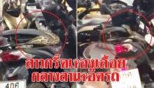 กรี๊ดลั่น!! งูตัวโตเลื้อยออกมาจากเบาะรถ จยย. ผวา ทั้งลานจอดรถ (คลิป)