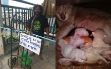 อย่าเรียกว่าลุง ให้เรียกว่าพี่!!!!! แชร์สนั่น!!! ลุงดำ ชายเร่ร่อนใจบุญ ขายมะนาวหาเงินซื้ออาหารเลี้ยงแมว