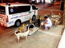 นับถือใจจริงๆ!!  หนุ่มอาสากู้ภัยซื้ออาหารติดรถช่วยหมาข้างถนนนับ10 ปี