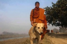 สุดซึ้ง! เจ้าโส สุนัขข้างทางวิ่งติดตามพระธุดงค์ไทยในอินเดีย
