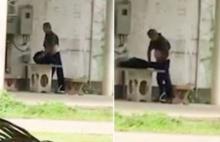 ไม่อายฟ้าดิน!แชร์ว่อนหนุ่มจับสุนัขข่มขืนกลางวันแสกๆ ตำรวจจับปรับ (คลิป)
