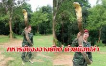 ฮือฮา!! ทหารหนุ่มโชว์จับจงอางยักษ์ 4 เมตร ด้วยมือเปล่า!