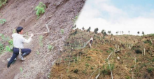 หนุ่มใช้เวลา30ปี ทุ่มเงิน200ล้าน ปลูกต้นไม้3แสนต้น จากภูเขากองขยะ ปัจจุบันเป็นแบบนี้?