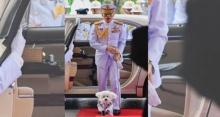 ฮือฮากับนิสัยแสนรู้  สุนัขทรงเลี้ยงในรัชกาลที่ 10 ชาวเน็ตเห็นถึงกับอึ้งในความน่ารัก