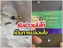 ร้องซื้อน้ำห้างดังบางนา แมลงสาบอื้อ! ห้างมอบบัตรกินข้าวมันไก่ฟรีปลอบใจ