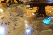 ขนลุก!สาวโวยซื้อโต๊ะไม้จากห้างดัง ถึงกับผงะเจอแมลงสาบเป็นฝูง