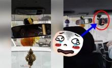 เฮ้ยย!! ยังงี้ก็ได้เหรอฟระ! ฝรั่งแฉ! แท็กซี่ ขับรถไป ตื๊ดๆ ไป (คลิป)