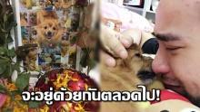 สุดสะเทือนใจ! หนุ่มเศร้าหนักถึงกับตรอมใจตาย หลังจากหมาสุดที่รักเสียชีวิตไป!!