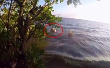 """""""ช่างภาพ"""" ถ่ายรูปอยู่ริมทะเล จู่ๆ เห็นบางอย่างลอยอยู่เหนือน้ำ! พอซูมเข้าไปดูใกล้ๆ ถึงกับช็อกสติแตก!!"""