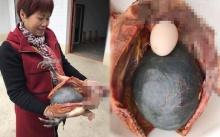 อาม่า นำไก่ที่เลี้ยง 3 ปี มาฆ่าเพื่อทำอาหาร พอผ่าท้องออก กลับเห็นก้อนกลมสีดำ ก่อนรู้ความจริง?