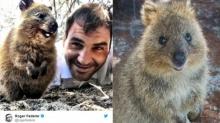 น่ารักจนอดใจไม่ไหว! นักท่องเที่ยวแห่เซลฟี่กับ 'ควอกก้า' ไอจีเตือนอาจเข้าข่ายทารุณสัตว์