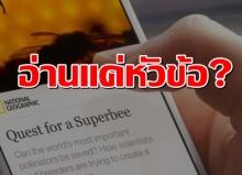 โคตรอึ้ง! นักวิจัยเผย คนไทยแชร์บทความโดยไม่อ่านเนื้อหาเป็นอันดับต้น ๆ ของโลก