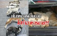 หนุ่มแอบขโมยหมาเพื่อนบ้านไปทำอาหารขาย โดนเจ้าของหมาไล่ตามสืบจนจับตัวได้!