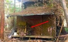 นักสำรวจพบกระท่อมร้างกลางป่า ตัดสินใจเปิดเข้าไปดูข้างใน แทบไม่อยากเชื่อสายตากับสิ่งที่ได้เห็น!!