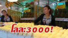 ต้องไปพิสูจน์ ใครที่ชอบกินทุเรียน ต้องไปลองกินทุเรียนกิโลละ 3000