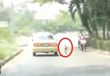 น่าสงสาร!!หมาวิ่งไล่ตามรถสุดพลัง หรือมันจะโดนทิ้ง!!(คลิป)