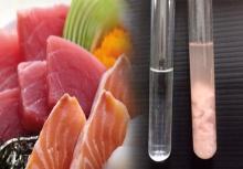 สัตวแพทย์แฉยับ!ร้านอาหารญี่ปุ่นชื่อดัง เสิร์ฟปลาโอย้อมสี!!
