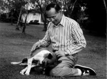 เมื่อคุณทองแดงงอน ในหลวงในพระบรมโกศ กลัวว่าจะรักสุนัขตัวอื่นมากกว่า