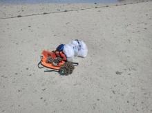 ของขึ้น!!!นนท.จีนแอบเด็ดประการัง หนุ่มทนไม่ไหวโร่แจ้งตำรวจ