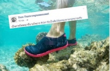 เหยียบปะการัง ก็เหมือนเหยียบย่ำหัวใจคนรักษ์ทะเล รองอธิบดี ชี้ ผิดกฏหมาย!!