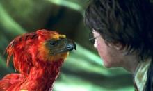 เจ เค โรว์ลิง ตอบคำถามฮิตใน Harry Potter หลังถูกถามมานาน 9 ปี!!