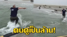 ไม่กลัวตาย!! ชายหนุ่ม รีบกระโดดลงทะเล พุ่งตัวไปบน ชายหาด เพื่อทำบางอย่างกับแมวน้ำ!! (คลิป)