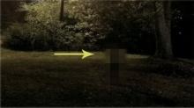 ขนหัวลุก!! ชายหนุ่ม นั่งชมพระจันทร์อยู่ดีๆ เห็นเงาแปลกๆวิ่งผ่าน รีบเอากล้องขึ้นมาถ่าย!