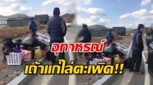 อุทาหรณ์ แรงงานไทยเกาหลี เผชิญชะตากรรมท่ามกลางอากาศหนาว นางจ้างตะเพิด!