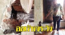 คนอยุธยาวอนออเจ้าเที่ยวโบราณสถาน โปรดระวัง ช่วยกันอนุรักษ์อย่าทำลาย!!