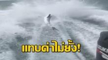 ทั่วโลกช็อก!! 3 หนุ่มลูกคนรวย ล่อ ฉลาม พอซูมเข้าไปเห็น เหยื่อ คนรุมสาปแช่ง!! (คลิป)