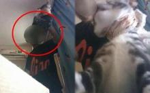 โหดเหี้ยมเกินมนุษย์!! หนุ่มฆ่าแมวแก้แค้นแฟนเก่าบอกเลิก ก่อนอัดคลิปส่งให้ดู (มีคลิป)