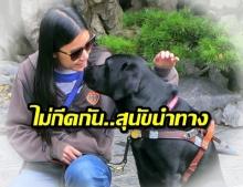 สาววอนองค์กรไทย ไม่กีดกัน คนตาบอดอาศัยสุนัขนำทาง