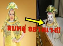 """ทำอย่างนี้ได้ไง! ศิษย์ธรรมกายซัดภาพแมวสวมชุด """"มหาลดาปสาธน์""""พร้อมเผยที่มาอันศักดิ์สิทธิ์!"""