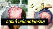 คนจีนโวย!! กินมังคุดไทยครั้งแรก บอกไม่อร่อยเลย!!