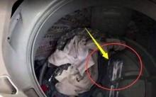 หนุ่มลองโยนขวดพลาสติกเปล่า ลงในเครื่องซักผ้า ผลลัพธ์ที่ออกมา ทำเอาร้านซักรีด มีหนาวๆร้อนๆ?