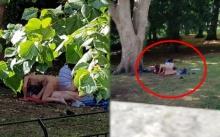 ภาพสยิวหลุดว่อน!! 4 ชายหญิง เซ็กซ์หมู่กลางสวนสาธารณะ กลางวันแสกๆ