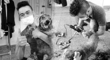 หนุ่มจิตอาสา ขอตามรอยเบื้องพระยุคลบาท ช่วยเปลี่ยนสภาพสุนัขจรจัด