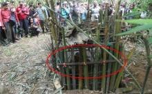ชายหนุ่มทำกับดักไว้ในป่า แต่พอจะเข้าไปเอาเหยื่อที่ดักได้ ถึงกับสะดุ้ง!! เจอเต็มๆตา