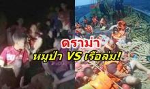 ความจริงเปิดเผย หลังลือว่อน!ชาวจีนไม่พอใจที่ไทยสนใจหมูป่ามากกว่าเรือล่ม!! (มีคลิป)