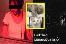 ทำความรู้จัก Dark Web ต้นตอข่าวดีเจสาวทำร้ายลูกแมว