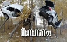 ขึ้นไปได้ยังไง!! เก๋งหักหลบรถคันหน้า เสียหลักพุ่งเหินขึ้นไปค้างอยู่บนต้นไม้ (มีคลิป)