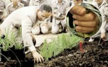 เผยภาพพระหัตถ์ ในหลวงร.9 ที่คนไทยไม่เคยสังเกต พระองค์ทรงงานหนักเพื่อพวกเราทุกคนมาตลอด...