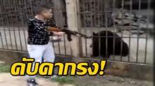 โซเชี่ยลฮือ! ตามล่าหาตัวหนุ่มเหี้ยมใช้ไรเฟิลยิงเจาะกะโหลก 'หมีดำ' ในกรง ตายอนาถ