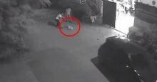 หดหู่!! เผยคลิปสุนัขบางแก้วพิการถูกทิ้ง ก่อนพยายามคลานกระเพกตามรถ