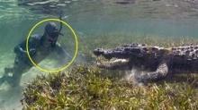 ทำไม ช่างภาพสารคดี ถึงกล้าลงไปถ่าย ไอเข้ ในน้ำแบบใกล้ๆไม่กลัวตาย?