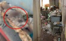 เพื่อนบ้านช็อก!! ตำรวจค้นบ้านหญิงชราวัย 77 ปี เมื่อเปิดห้องนอนเข้าไป ถึงกับผงะกับสิ่งที่เห็น?