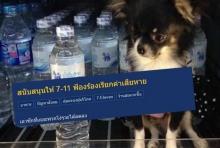 ชาวเน็ตสวดยับ เจ้าของพาหมาเข้าเซเว่นฯ ถ่ายรูปโชว์ในตู้ขายน้ำดื่ม