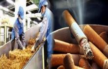 ยังกล้าสูบไหม!!ถ้าได้รู้ความลับจากพนักงานโรงงานผลิตบุหรี่